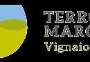 TERROIR MARCHE FESTIVAL il 20 e 21 maggio 2017 a Macerata