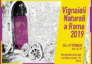 2009 – 2019: 10 anni di Vignaioli Naturali a Roma. 26-27 gennaio